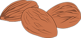 almonds clipart