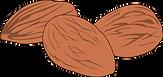 almonds clipart