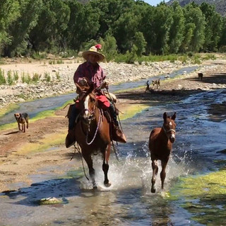 ranch life 6.jpg