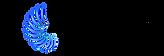 APP_electric_logo_rgb_black.png