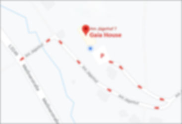 Gaia's Street Map