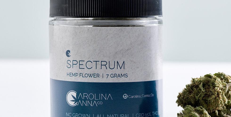 Spectrum Flower