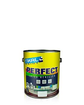 Latex Perfect G.jpg