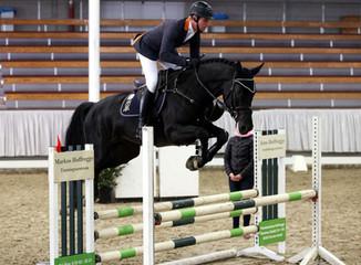 Stallion Sport Test Guidelines Released