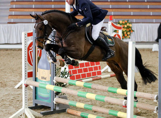 FN Jumping courses added to website