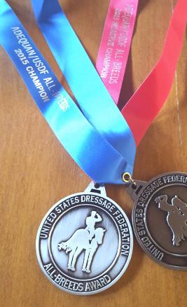 American Rhineland Studbook's 2016 USDF All-Breeds Awards Winners!