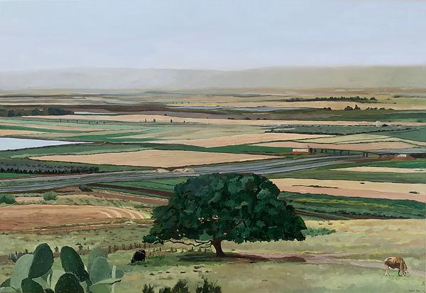 נוף העמק דיפטיק ימני.jpg
