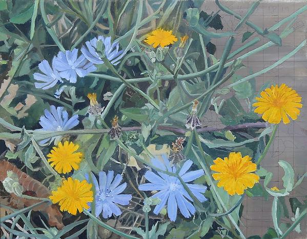 ציור פרחים בתחילת הקיץ  סבך ועלים יבשי עולש וסביונים צהוב וסגול