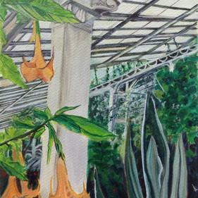 Kew gardens III