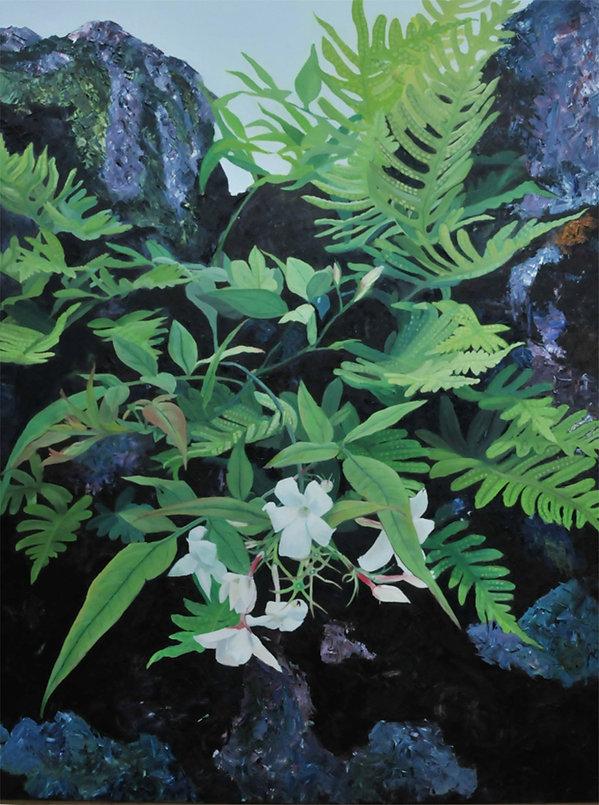 ציורי יסמין גדל עם אבנים של גדר עתיקה בכפר מינסטר שבאנגליה