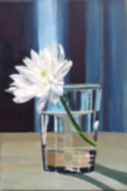 Painting of Chrysanthemum in white in a glass with blue background