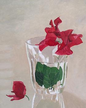 בוגנוויליה בכוס זכוכית.jpg
