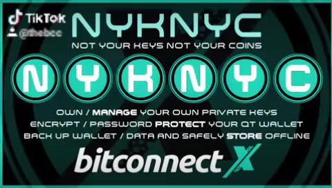 The BitCoin Genesis / BTC BlockChain