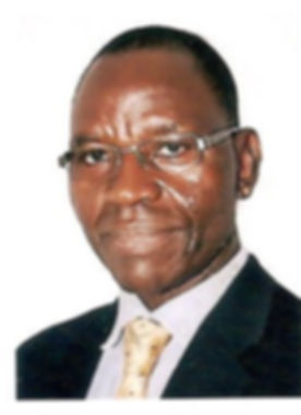 Photo - Dr Basil Onugu 2015.jpg