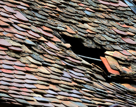 roof-5217069_1920.jpg