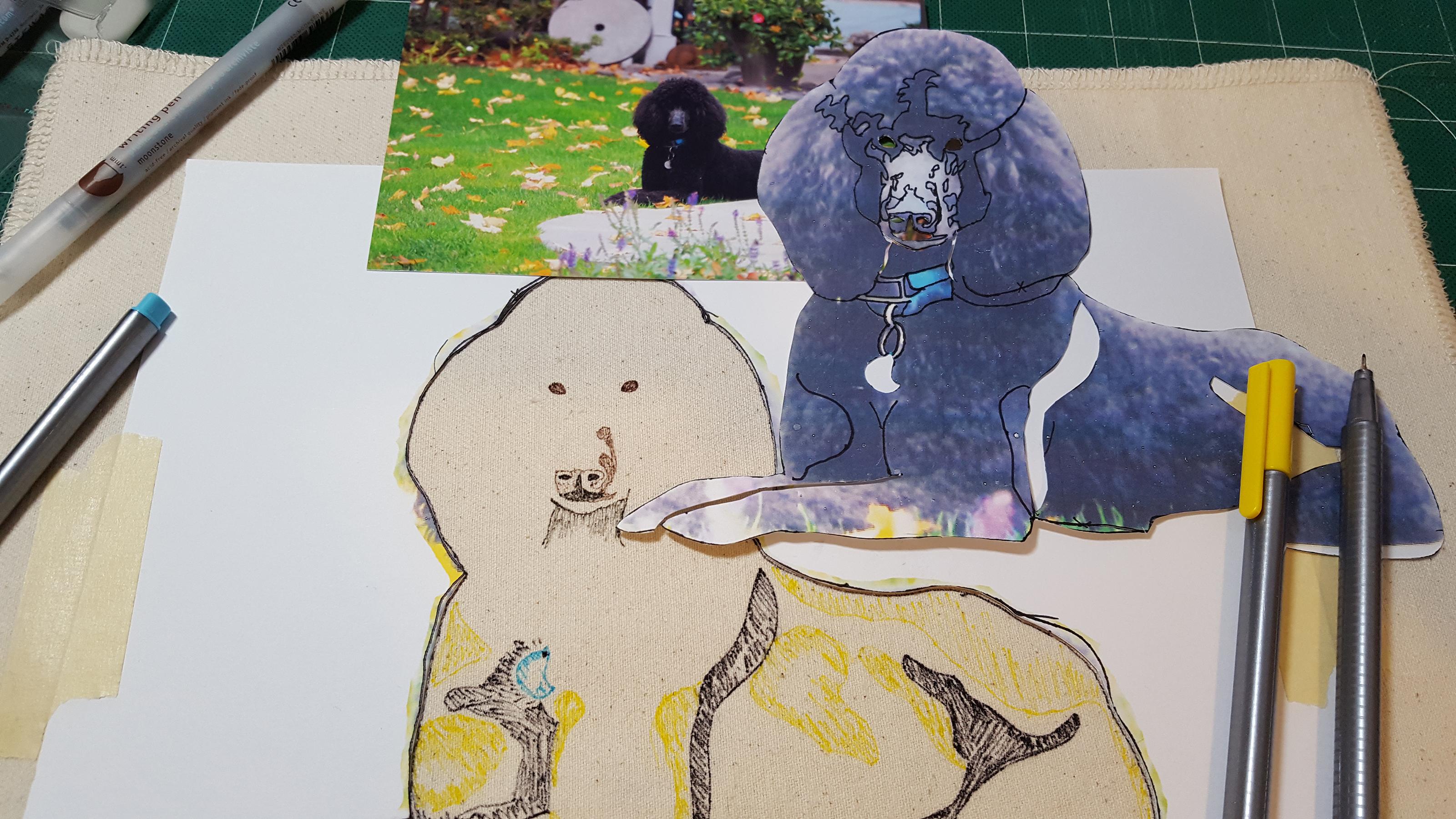 poodle slideshow 02