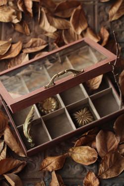 コレクションBOX