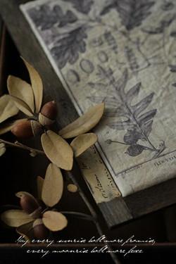植物画アクセサリーBOX