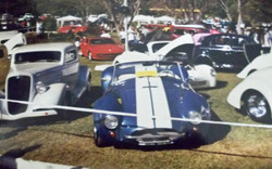 Shelby Cobra_001.jpg