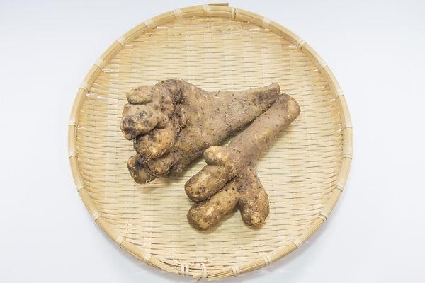 短径自然薯