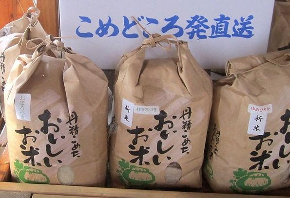 ハウス工藤園芸米の食べ比べセット