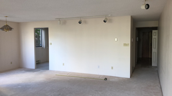 Kitchen wall before demo