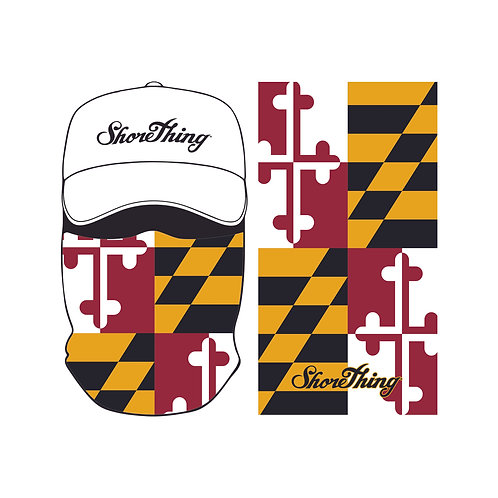 Maryland State Flag Protec