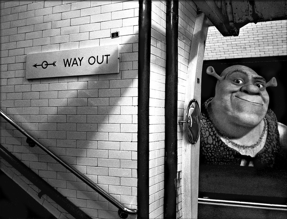 Way Out Shrek