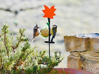Déco en métal, les oiseaux au jardin FLEUR
