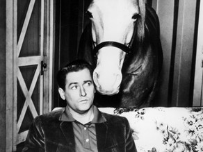 Mr. Ed star taught at Donna Reed Festival