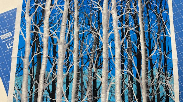 Midnight Woods - Panel