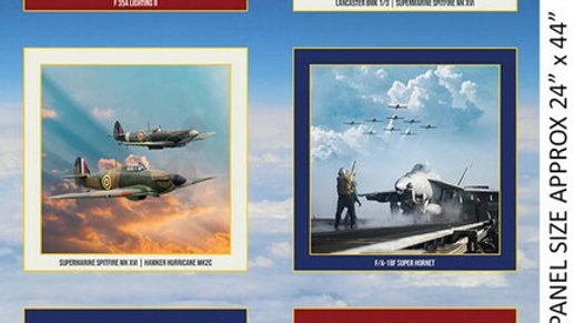 Air-Force Centenary panel