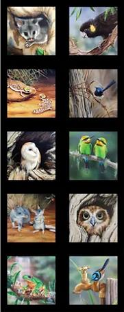 Screenshot_2020-12-02 WILDLIFE ART 5.png