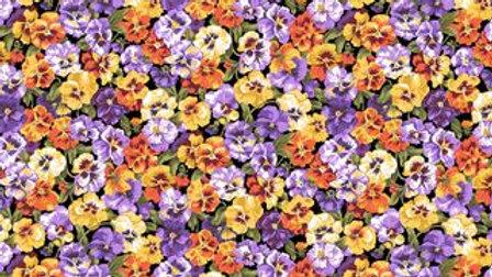 Summer Garden - Pansy (per m)