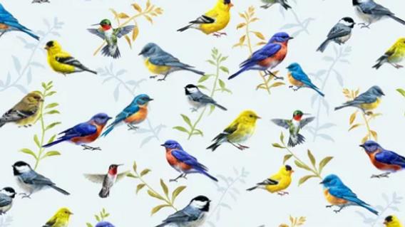 Songbirds #04322 (per m)