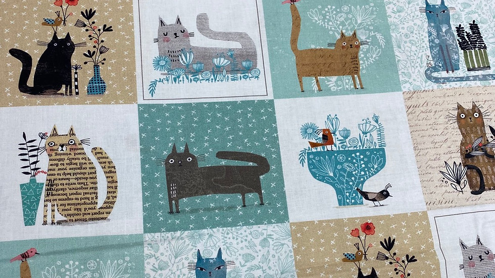 It's raining cats and dogs (per m)