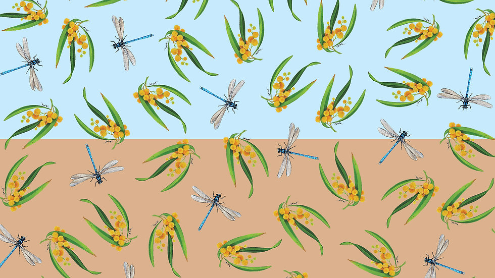 Wildlife Art v2 #3184 Dragonfly/Wattle (per m) split-bolt
