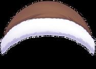 brown top.png