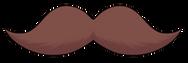 12 dark brown.png