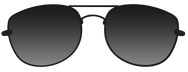 sunglasses deal with it.png