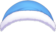 blue top.png