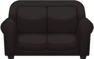 black couch.png