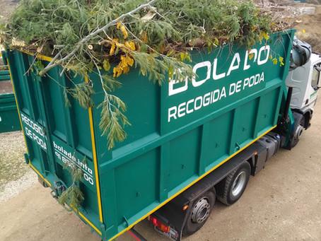 TEMPORADA DE PODA: ¿Cómo colaborar con una buena Gestión de Residuos?