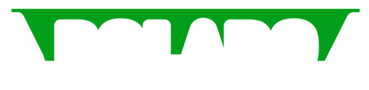 Logo Bolado 2020_3x.png
