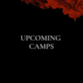 PREVIOUS CAMPS (1).png