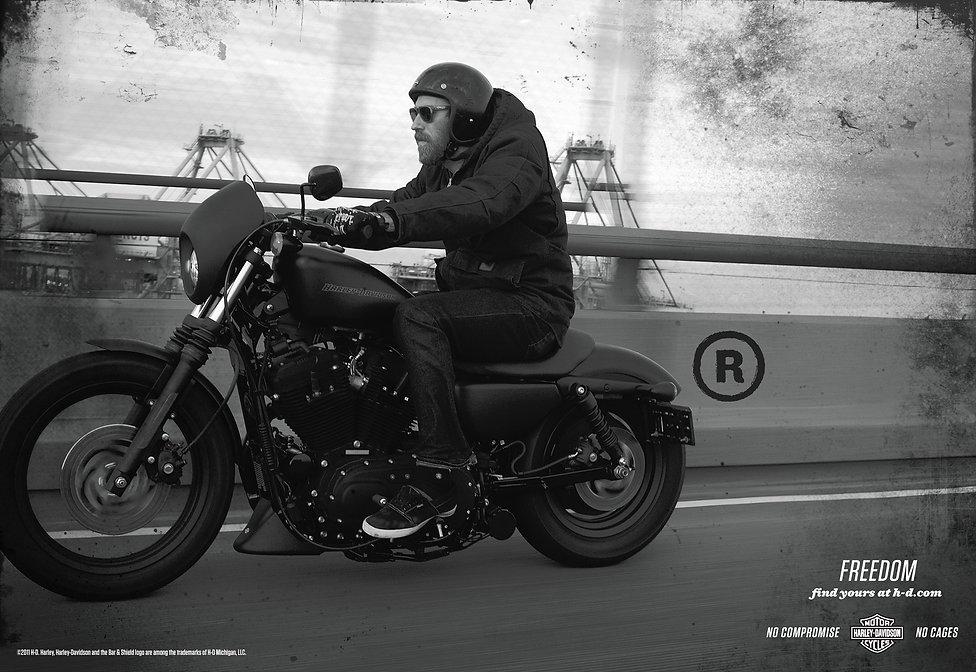 Harley 4.jpg
