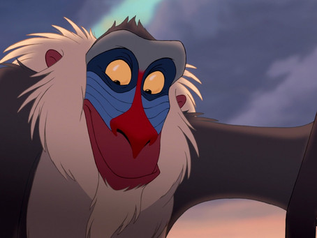 What Marketers Can Learn From Rafiki