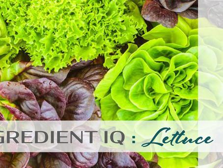 INGREDIENT IQ : Lettuce