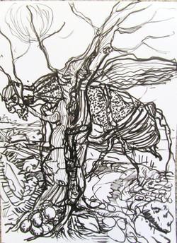 vincenzino+animali+e+insetti+(3).jpg