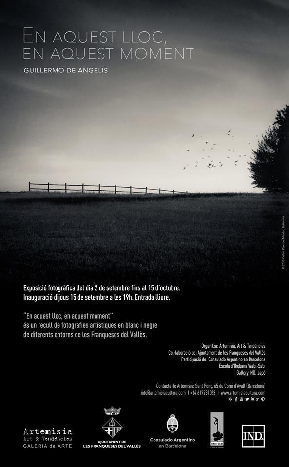 Afiche II